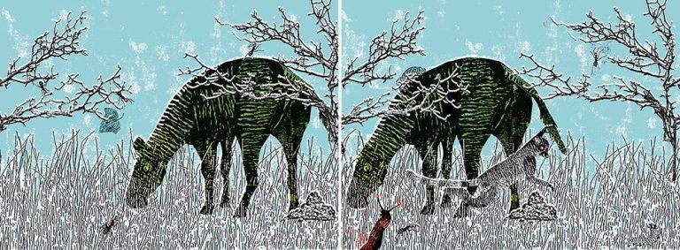 Houd de dief / zebra